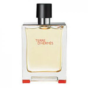 Hermes Terre D`Hermes Eau De Toilette Spray 50ml